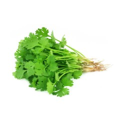 Coriander (Sanitized)