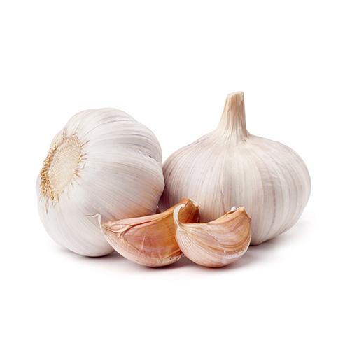 Garlic Pure White