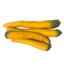 Carrots Yellow