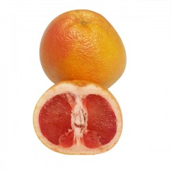 grapefruit-red-1
