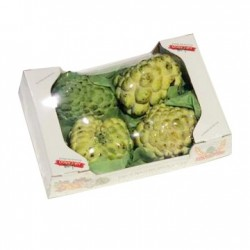 custard-apple-pack-lebanon