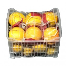 grape-fruit-white-box