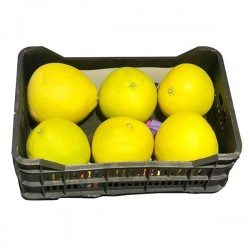pomelo-white-syria-box